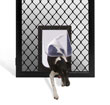 Diamond Petway Pet Door
