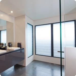 Bathrooms windows
