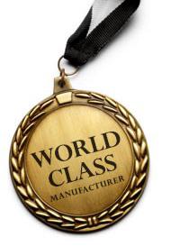 World Class Medal